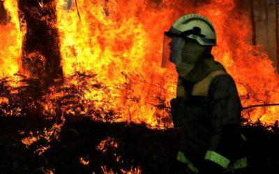 Plan municipal de prevención e defensa contra os incendios forestais.